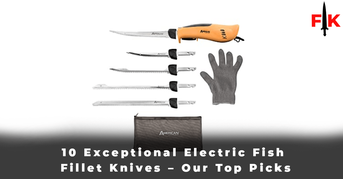10 Exceptional Electric Fish Fillet Knives – Our Top Picks