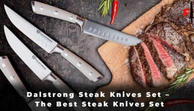 Dalstrong Steak Knives Set - The Best Steak Knives Set