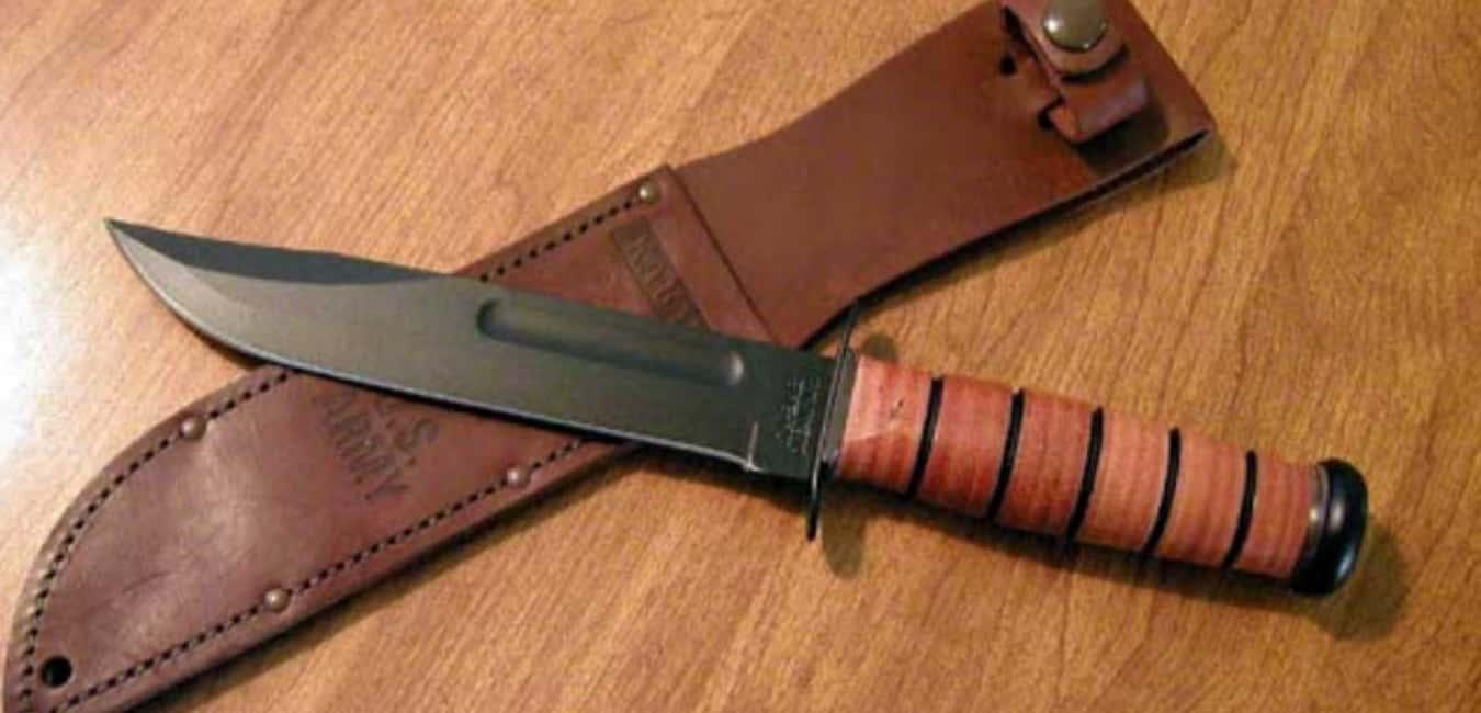 Is 1095 CRO-Van Steel Good for Knives